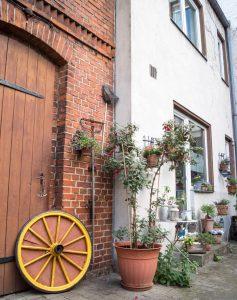 Частные сады Берлина | Блог Berlin with sense