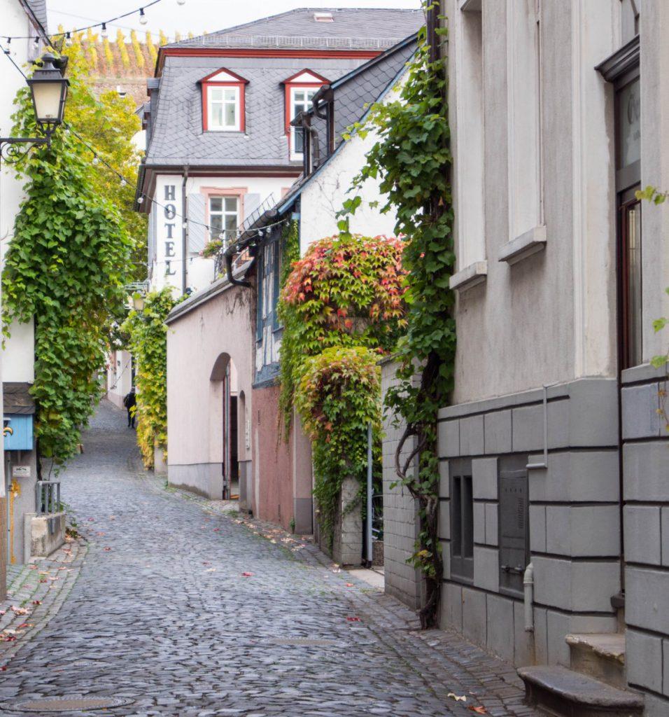 Долина Рейна | Блог Berlin with sense