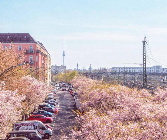 Весна в Берлине | Блог Юлии Вишке Berlin with sense